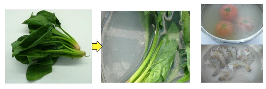 野菜専用洗浄剤実験画像